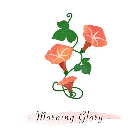 Colorful watercolor texture vector botanic garden flower orange morning glory