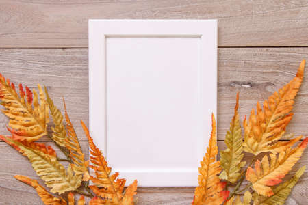 Nature garden plant Autumn red fern leaf retro wood vintage table white frame mock up