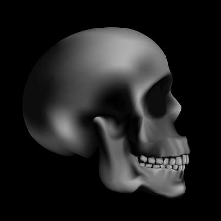 Scary human skull in black background