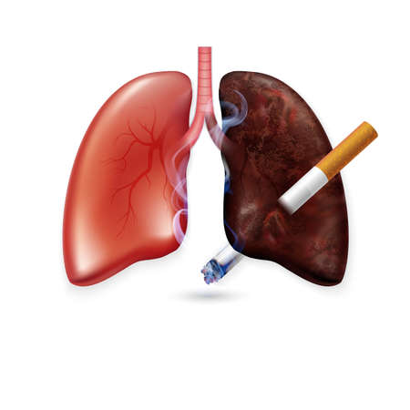 Stop smoking campaign illustration no cigarette for health cigarette puncture realistic lungs 写真素材