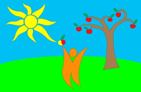 Man happing of harvest of apples in sunny day Stock Photo - 6863935
