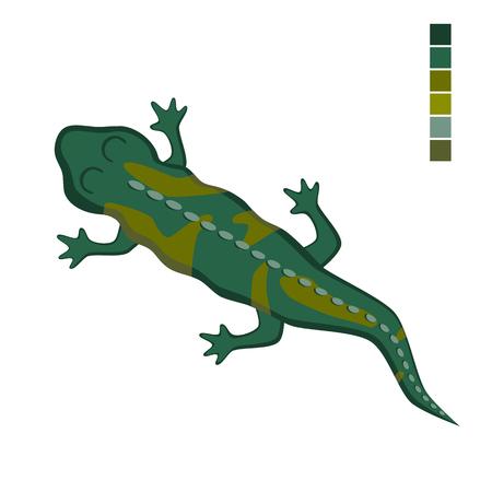 original single: Vector illustration of a lizard salamander. Crawling reptile.