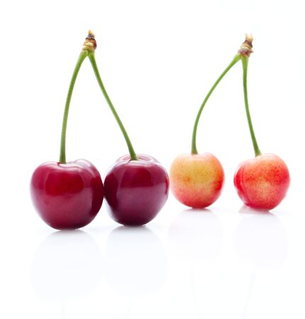 ripeness: The cherries which are at different stages of ripeness close-up
