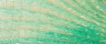 Textured Fragment of the Wooden Plank Processed with Antifungals photo