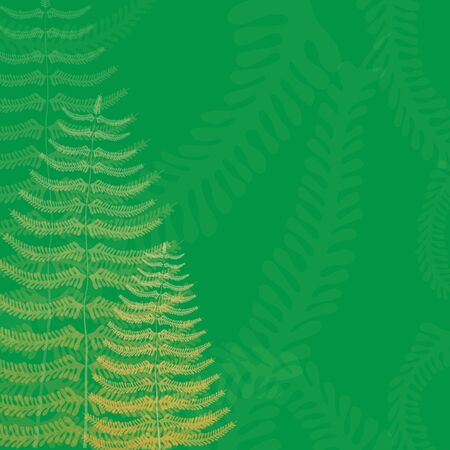 fronds: Floral Background with Fern Fronds and Free Space