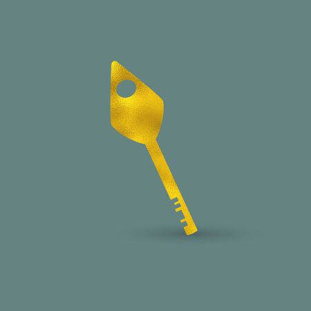 golden texture: Siimple Single Key with Golden Texture on Color Background Illustration