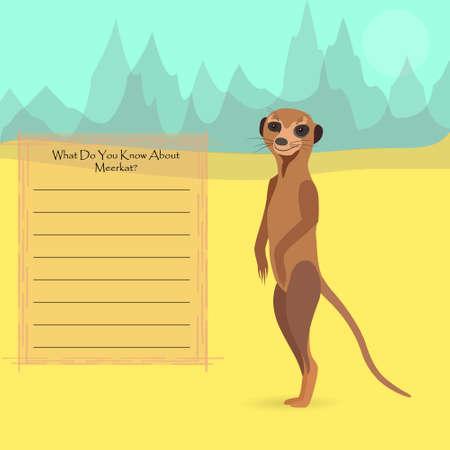 meerkat: African Meerkat