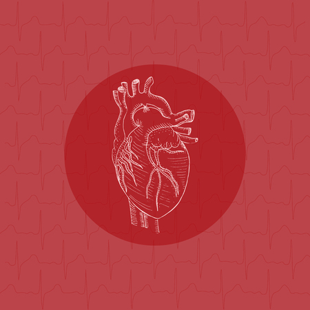 White human heart on substrate vector illustration.