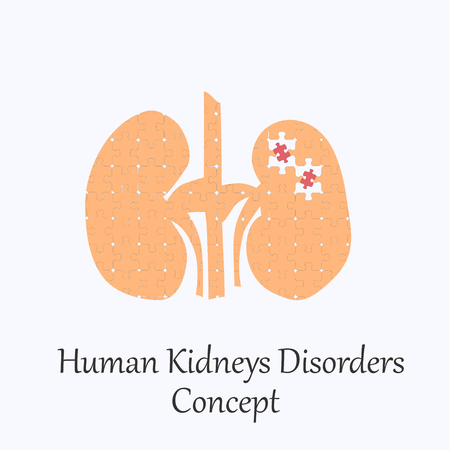 Human Kidneys Filled with Puzzle Pattern Few of Whitch Unfit to the Whole. Conceptual Image of Human Kidneys Disorders in its Initial Stage. Illustration