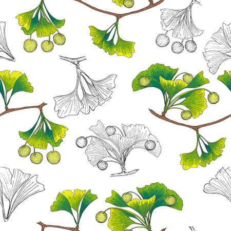 Pattern with Ginkgo both Colored and Outlined 일러스트