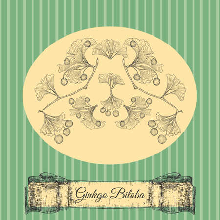 Hand Drawn Ginkgo Biloba on a Vintage Style Card 일러스트