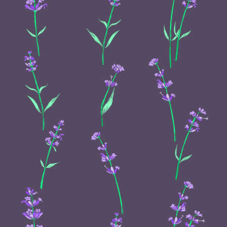Seamless Pattern with Colored Parts of Lavender 일러스트