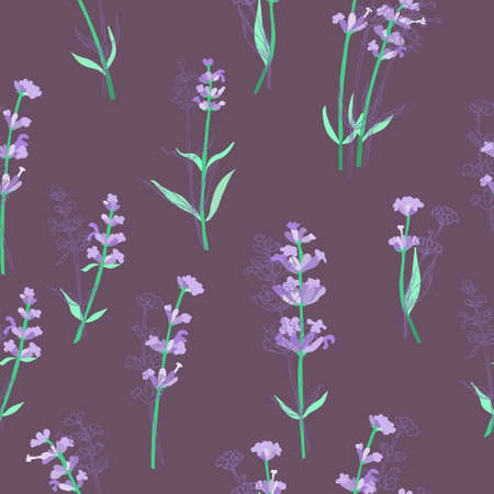Seamless Pattern with Different Parts of Lavender 일러스트