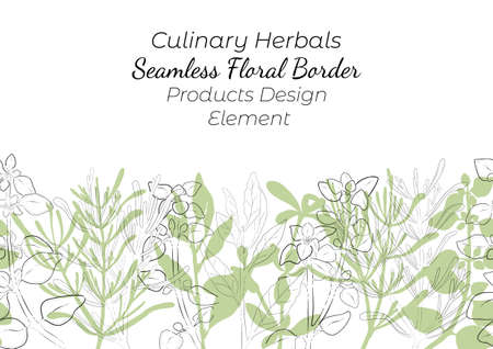 Seamless Border Made with Hand Drawn Culinary Herbals Arranged Horizontally. Thyme, Oregano, Rosemary and Laurel Made as Filled Shapes and Contour Drawing. Vector decoration or Product Design Element. Vettoriali