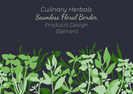 Seamless Border Made with Hand Drawn Culinary Herbals Arranged Horizontally. Thyme, Oregano, Rosemary and Laurel Made as Filled Shapes. Vector decoration or Product Design Element.