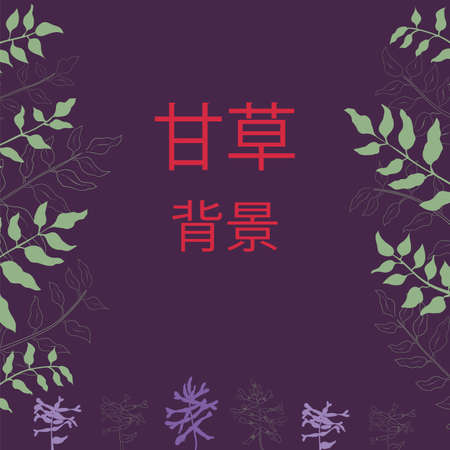Poster with Outlined and Color Filled Chinese Liquorice Leaves and Flowers. Dark Violet Background with Red China Characters meaning Gancao Background.
