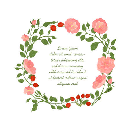 Frame with Roundish Shape made with Hand Drawn Colorful Twigs, Leaves, Flowers and Buds of a Dog-Rose. Vector Illustration for Traditional Medicine Products, Posters, Designs.