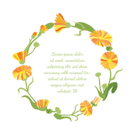Frame with Roundish Shape made with Hand Drawn Colorful Twigs, Leaves and Flowers of a Marigold. Vector Illustration for Traditional Medicine Products, Posters, Designs.