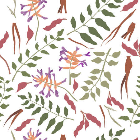 Seamless Pattern with Chinese liquorice colored Parts. Leaves, Flower Heads, Roots and Beans Placed Chaotically on White Backdrop. Ideal for Magazine, Recipe book, Poster, Card, Menu cover etc.