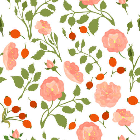 Seamless Pattern with Colored Dog-Rose. Twigs, Flower Heads, Fruits and Leaves Placed Chaotically on White Backdrop. Ideal for Magazine, Recipe book, Poster, Card, Menu cover etc.