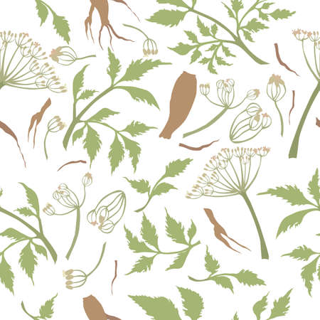 Seamless Pattern with Colored Angelica sinensis Parts. Twigs, Umbels, Leaves and Roots Placed Chaotically on White Backdrop. Ideal for Magazine, Recipe book, Poster, Card, Menu cover etc.