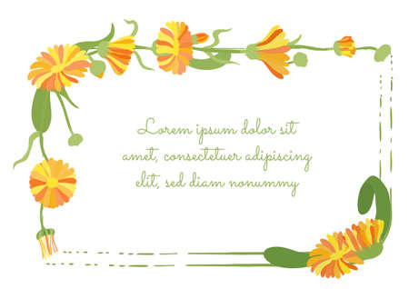 Squarish Frame Decorated by Calendula Plant Garland and Brush Strokes. Multicolored Desert Marigold Flower for Magazine, Recipe book, Poster, Cards, Menu cover etc.