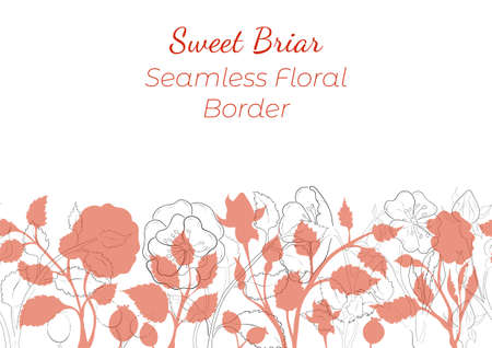 Seamless Border Made with Hand Drawn Rosa Canina Arranged Horizontally. Dog-Rose branches, flowers, buds, leaves, fruits made of contour and silhouettes. Composition for Any Designs, Advertising etc.