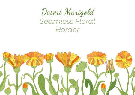 Seamless Border Made with Hand Drawn Calendula