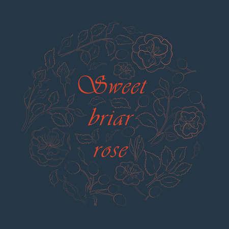 Circle Composition with Dog-Rose and a Phrase Illusztráció