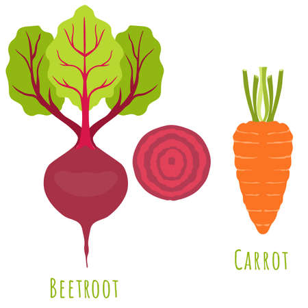 Beetroot plant and Carrot isolated on white, made in flat style. No outlined Symmetrical shapes filled with color only. Colorful vector illustration for product design, web and print usage. 矢量图像