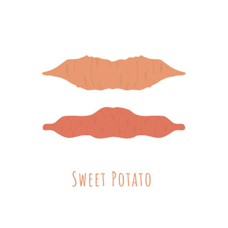 Two whole sweet potatos isolated on white and made in flat style. No outlined Symmetrical shapes filled with color only. Colorful vector illustration for product design, web and print usage.