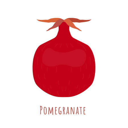 Single one pomegranate fruit isolated on white, made in flat style. No outlined Symmetrical shape filled with color only. Colorful vector illustration for product design, web and print usage.
