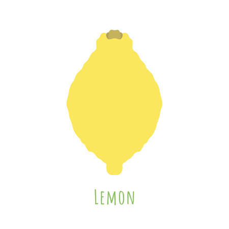 Single one lemon fruit isolated on white, made in flat style. No outlined Symmetrical shape filled with color only. Colorful vector illustration for product design, web and print usage. 矢量图像