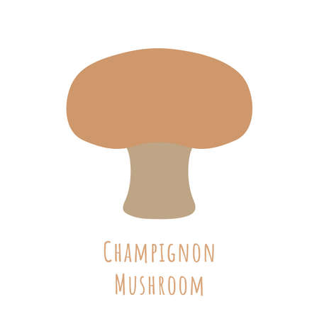 Single one chestnut mushroom or champignon isolated on white, made in flat style. No outlined Symmetrical shape filled with color only. Vector illustration for product design, web and print usage.