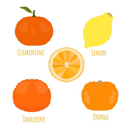 Sweet yellow whole and half cutted citrus fruits isolated and made in flat style. No outlined Symmetrical shapes filled with color only. Vector illustration for product design, web and print usage. 矢量图像