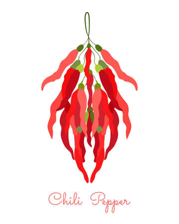 Bunch of Chili Pepper hanging on the rope. Flat style vector illustration. Symmetrical shape with shadow