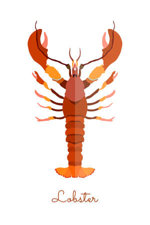 One Isolated Lobster made in flat style. Colored Lobster without outlines, with geometrical shadows. Fresh crustacean, product, healthy protein seafood. 矢量图像