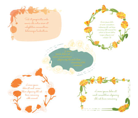 Five Frames of different designs made with Hand Drawn Outlined and Colored leaves of a Calendula Placed Separately. Vector Illustration for Traditional Medicine Products, Posters, Designs.
