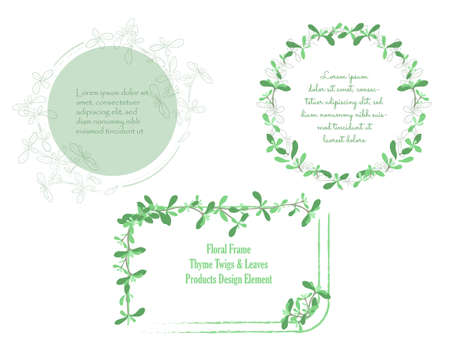 Set with Frames made of Hand Drawn Thyme Leaves. Traditional Symbol of Victory. Outlined with Brushes and Colored leaves Placed Separately. Vector Illustration for Culinary Product, Posters, Designs.