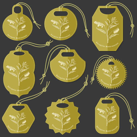 Set of Colored Tags on the Dark Background Made in Flat Style with Mongolian Milkevitch Herb silhouette. Isolated Group of Hang Tags for Herbal Product Packaging.