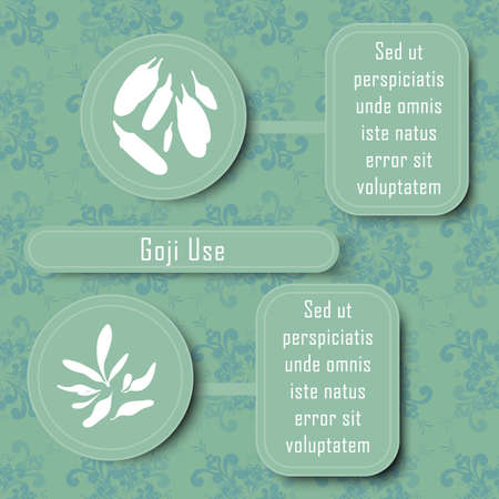 Inforgraphic Board for Traditional and Scientific Herbal Medicine Study. Goji Commonly Used Parts and Boards for Description. Vintage Design with Floral Seamless Pattern as Background.