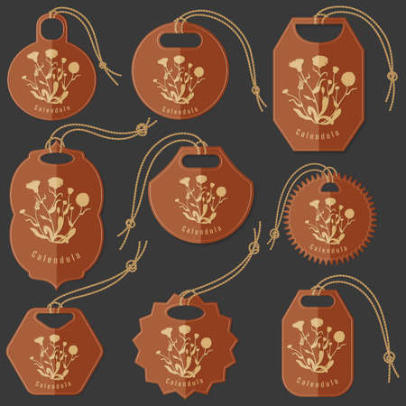 Set of Colored Tags on the Dark Background Made in Flat Style with Marsh Marigold silhouette. Isolated Group of Hang Tags for Herbal Product Packaging. Illusztráció