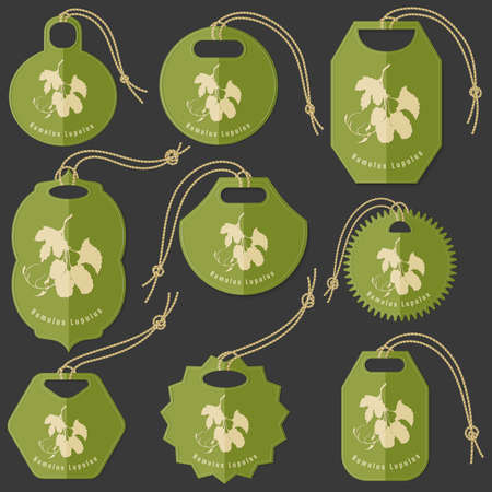 Set of Colored Tags on the Dark Background Made in Flat Style with Humulus lupulus silhouette. Isolated Group of Hang Tags for Herbal Product Packaging.