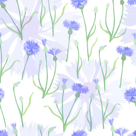Seamless Pattern with Color Cornflower Flowers and Twigs. Vibrant Bachelors button flowers Isolated on White background with semitransparent Blaver flower heads. Pattern for fabric, paper prints etc.