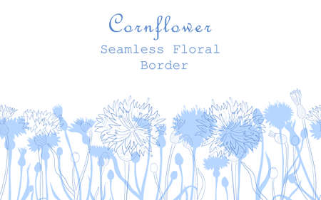 Seamless Border Made with Hand Drawn Centaurea cyanus Arranged Horizontally. Cornflower stems, flowers, buds, leaves made of contour and silhouettes. Composition for Any Designs, Advertising etc. Illusztráció
