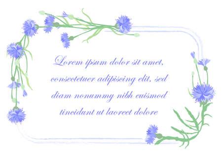 Squarish Frame Decorated by Centaurea cyanus Plant Garland. Multicolored Cornflower for Magazine, Recipe book, Poster, Cards, Menu cover etc. Illusztráció