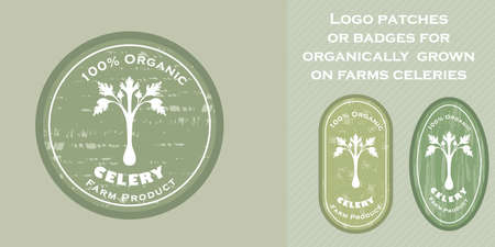 Three  patches with celery icon and texture. Badge for packages with organic farm grown celeries. Different shapes of the badges. Emblems for farm products packaging.