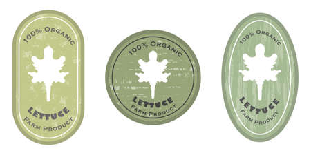 Three  patches with lettuce leaf icon and texture. Badge for packages with organic farm grown lettuce salad. Different shapes of the badges. Emblems for farm products packaging. Illusztráció
