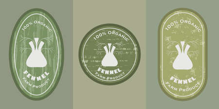 Three  patches with fennel icon and texture. Badge for packages with organic farm grown fennels. Different shapes of the badges placed on colored background. Emblems for farm products packaging.