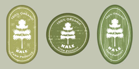 Three   patches with kale leaf icon and texture. Badge for packages with organic farm grown kale or leaf cabbage. Different shapes of the badges. Emblems for farm products packaging.